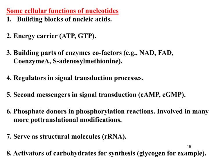 Some cellular functions of nucleotides