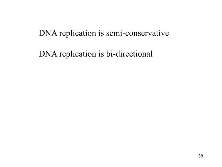 DNA replication is semi-conservative