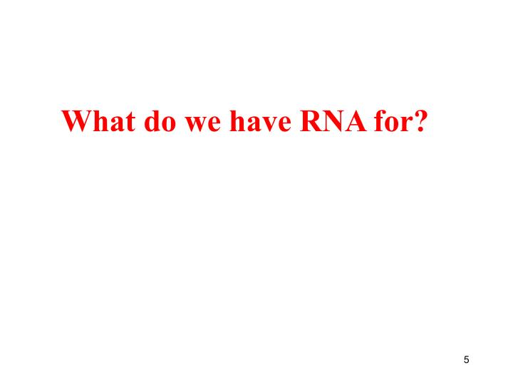 What do we have RNA for?