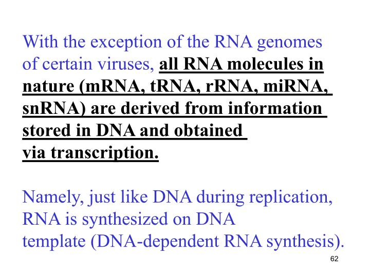 With the exception of the RNA genomes