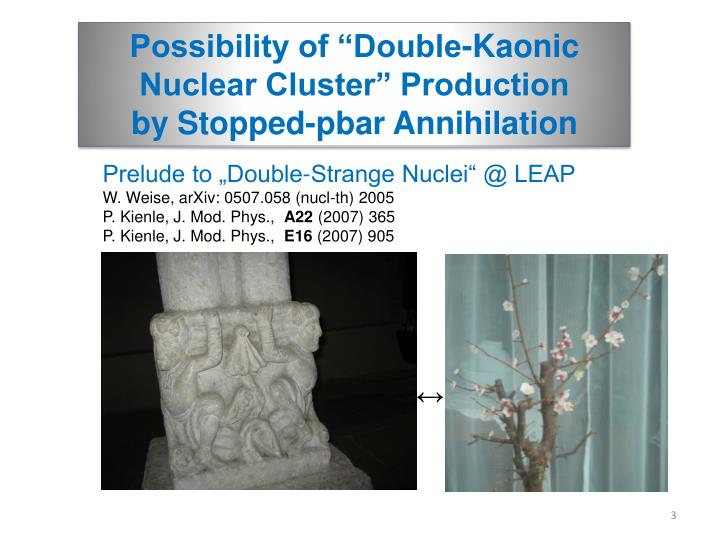 "Possibility of ""Double-Kaonic"