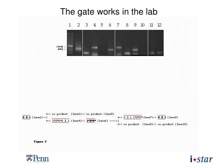 The gate works in the lab