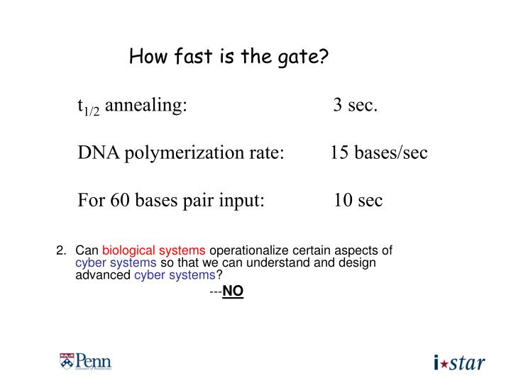 How fast is the gate?