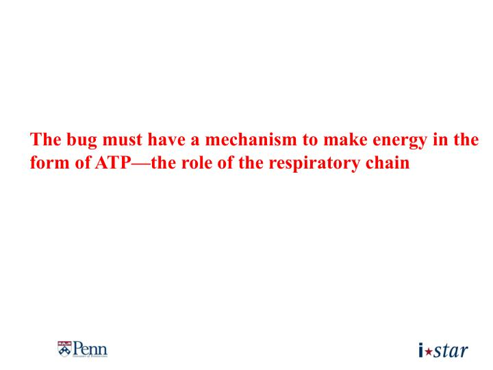 The bug must have a mechanism to make energy in the form of ATP—the role of the respiratory chain