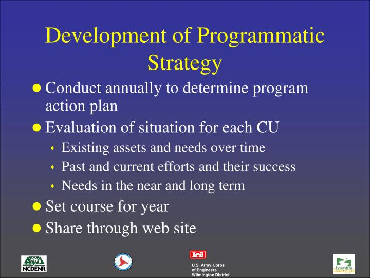 Development of Programmatic Strategy