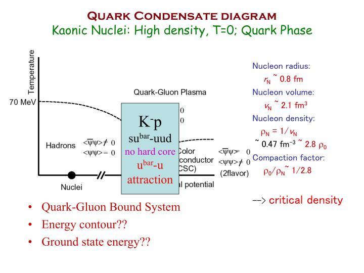 Quark-Gluon Bound System