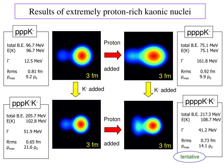 Results of extremely proton-rich kaonic nuclei