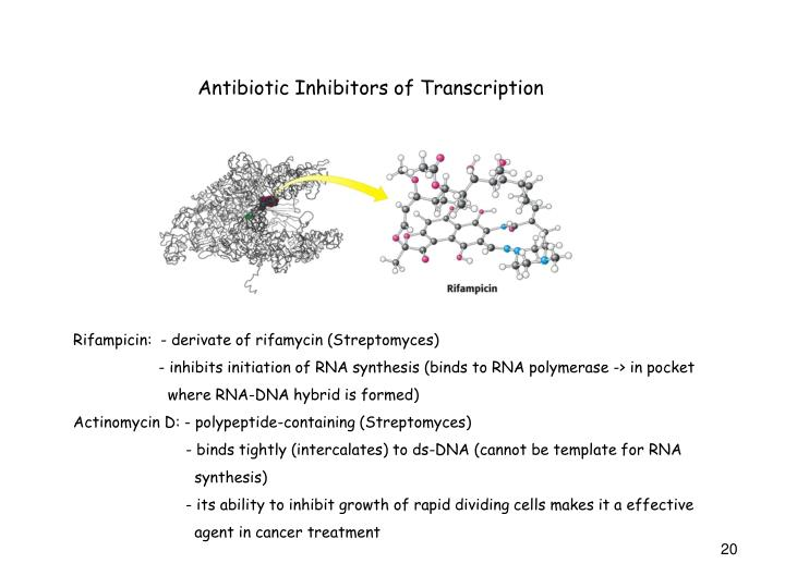 Antibiotic Inhibitors of Transcription