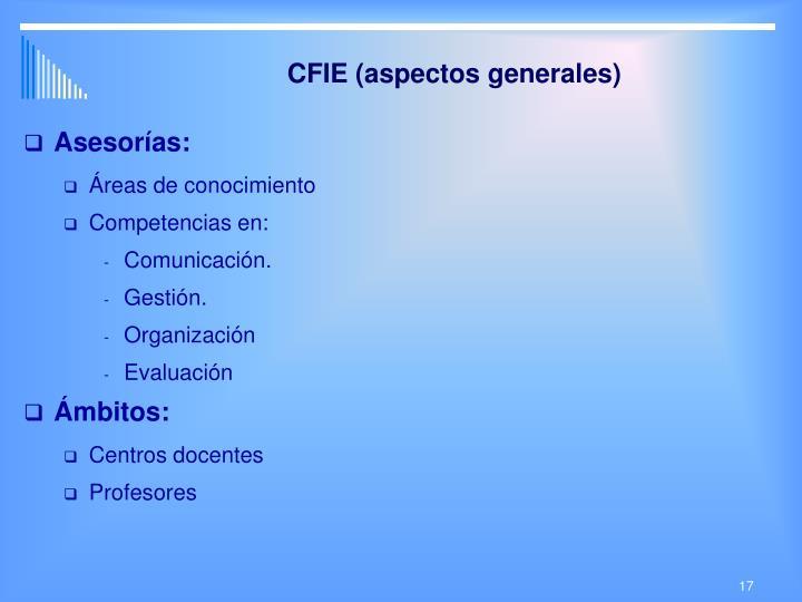 CFIE (aspectos generales)