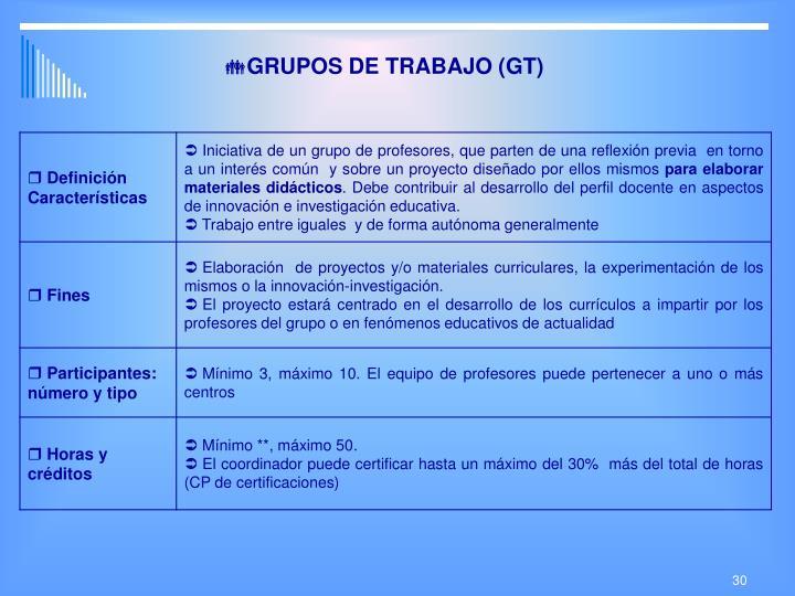GRUPOS DE TRABAJO (GT)