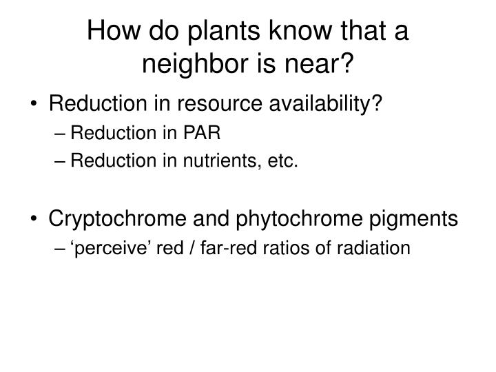 How do plants know that a neighbor is near?