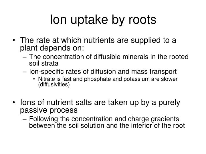 Ion uptake by roots