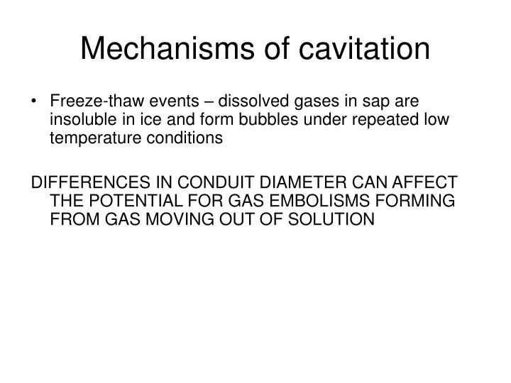 Mechanisms of cavitation