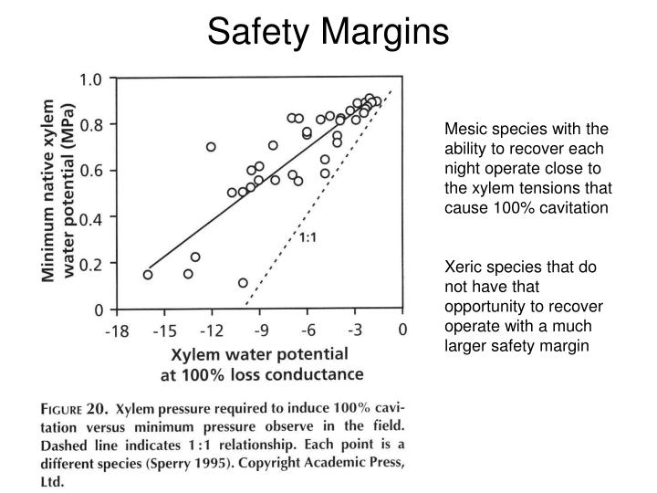 Safety Margins