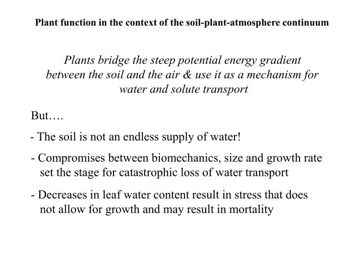 Plant function in the context of the soil-plant-atmosphere continuum