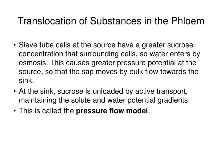 Translocation of Substances in the Phloem