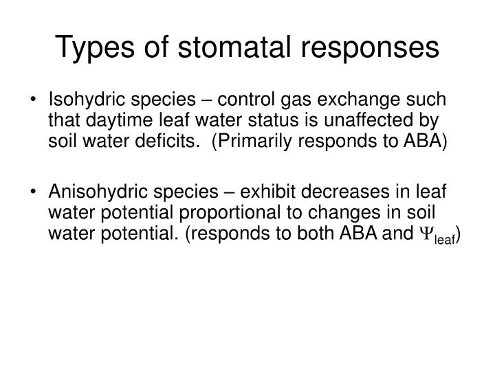 Types of stomatal responses