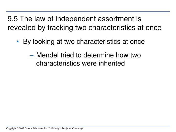 9.5 The law of independent assortment is revealed by tracking two characteristics at once