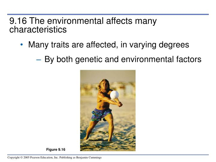 9.16 The environmental affects many characteristics