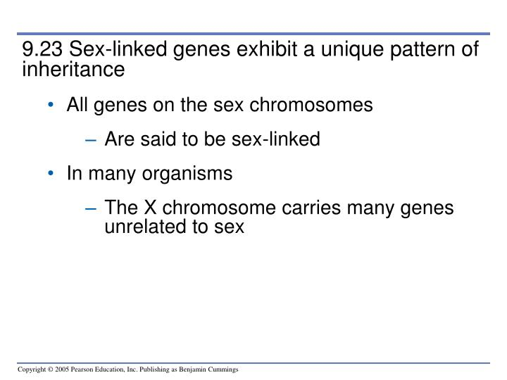 9.23 Sex-linked genes exhibit a unique pattern of inheritance