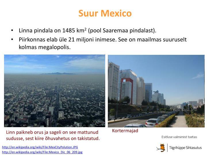Suur Mexico