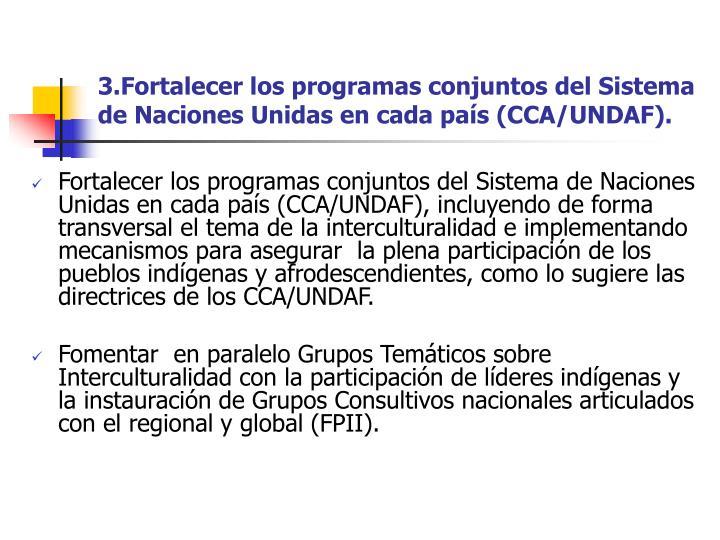 3.Fortalecer los programas conjuntos del Sistema de Naciones Unidas en cada país (CCA/UNDAF).