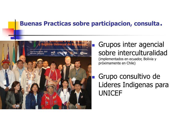 Buenas Practicas sobre participacion, consulta