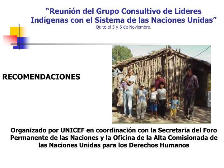 Organizado por UNICEF en coordinación con la Secretaria del Foro Permanente de las Naciones y la Oficina de la Alta Comisionada de las Naciones Unidas para los Derechos Humanos
