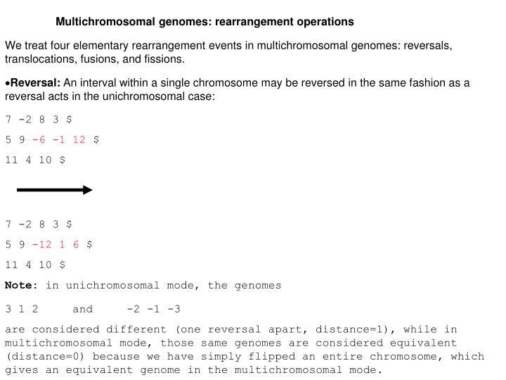 Multichromosomal genomes: rearrangement operations