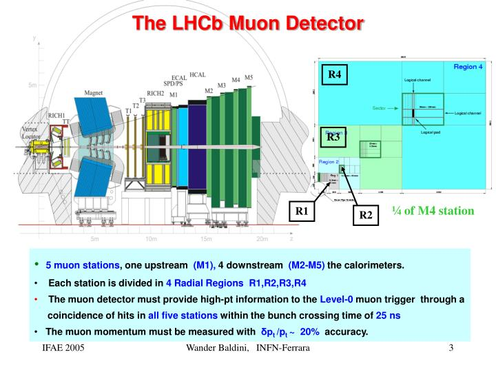The LHCb Muon Detector