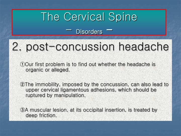 The Cervical Spine