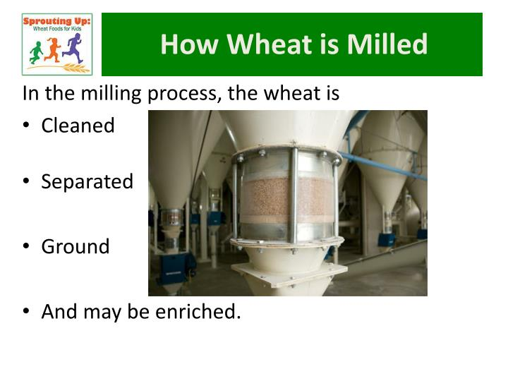 How Wheat is Milled