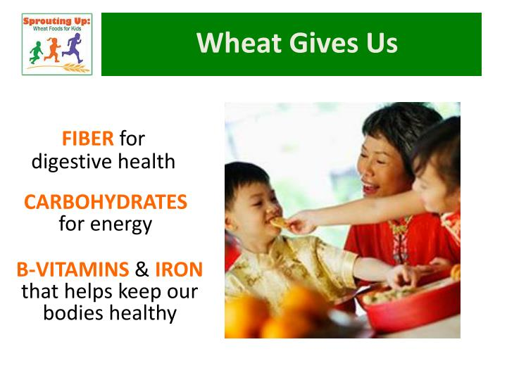 Wheat Gives Us