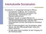 interkulturelle sozialisation4