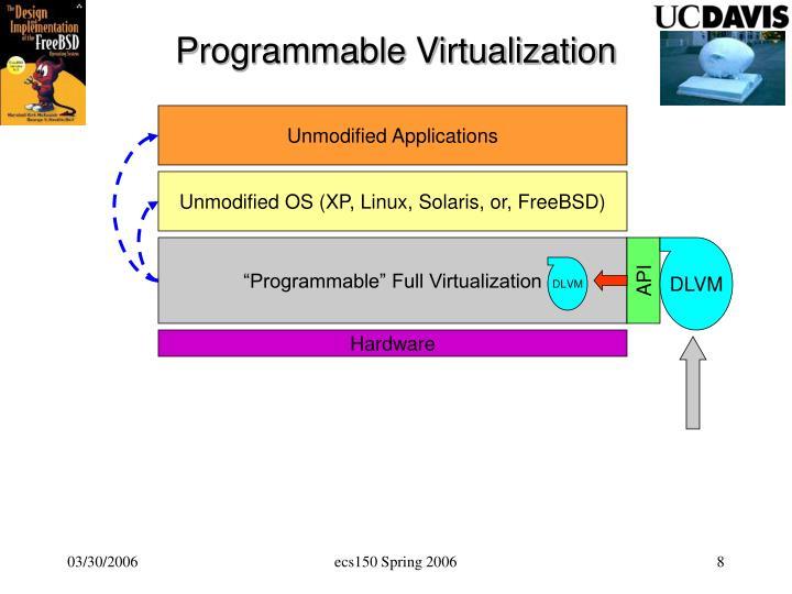 Programmable Virtualization