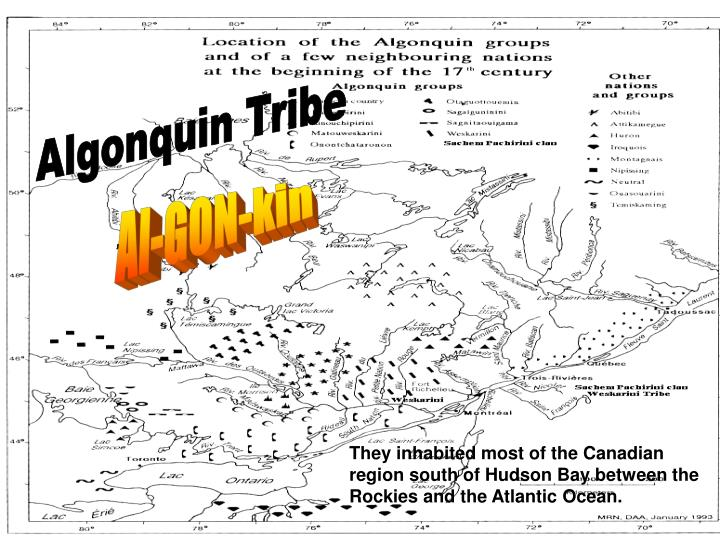 Algonquin Tribe