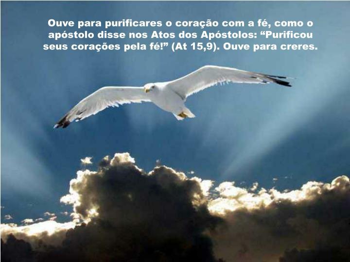 """Ouve para purificares o coração com a fé, como o apóstolo disse nos Atos dos Apóstolos: """"Purificou seus corações pela fé!"""" (At 15,9). Ouve para creres."""