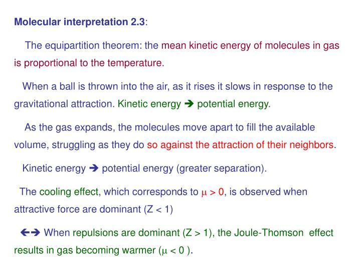 Molecular interpretation 2.3