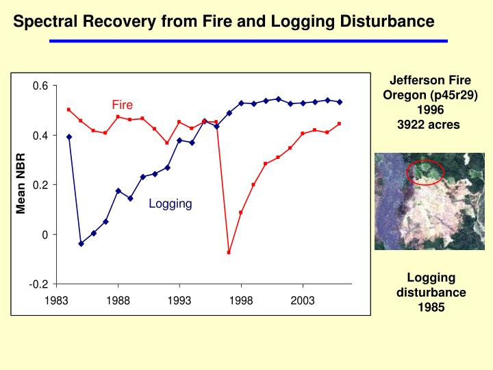 Spectral Recovery from Fire and Logging Disturbance