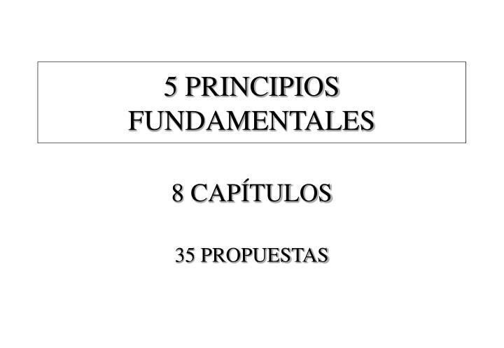 5 PRINCIPIOS FUNDAMENTALES