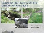 existing rip rap cover w soil re vegetate with native buffer