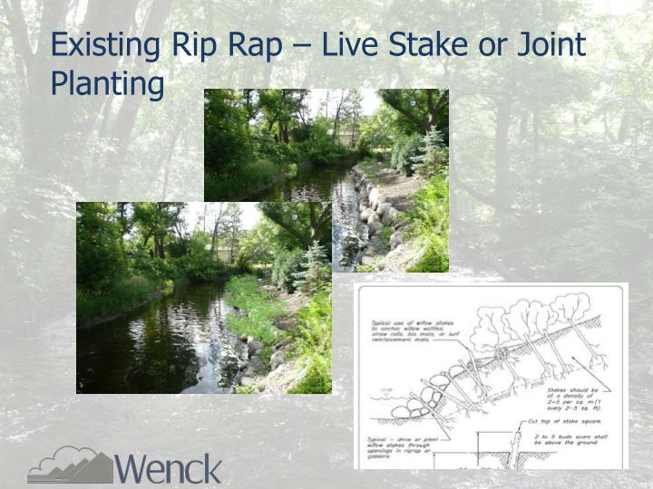 Existing Rip Rap – Live Stake or Joint Planting