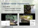 in stream habitat improvements