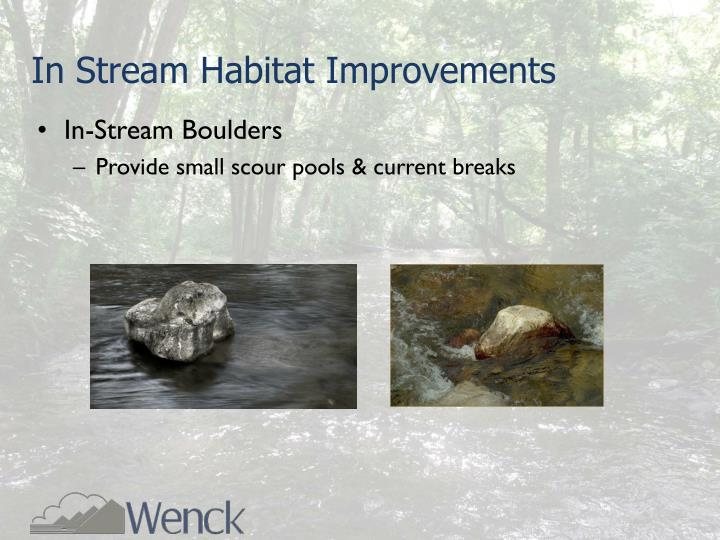 In Stream Habitat Improvements
