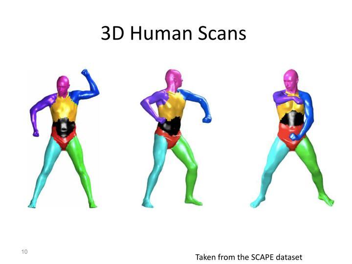 3D Human Scans