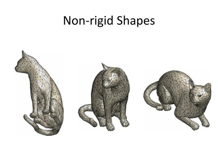 Non-rigid Shapes