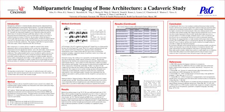 Multiparametric Imaging of Bone Architecture: a Cadaveric Study