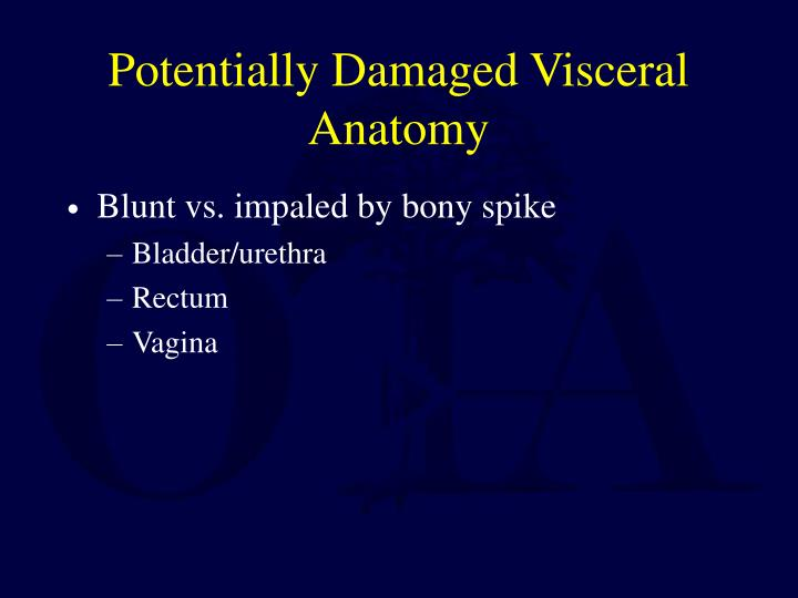 Potentially Damaged Visceral Anatomy