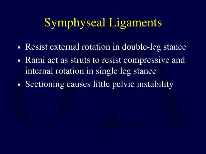 Symphyseal Ligaments