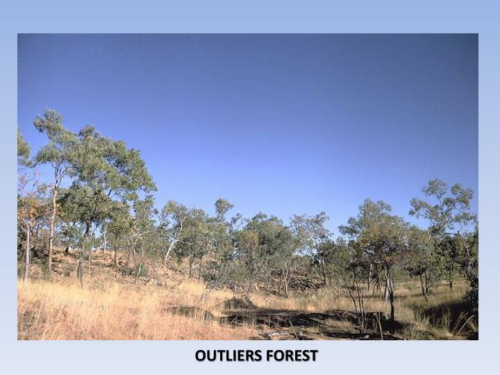 OUTLIERS FOREST